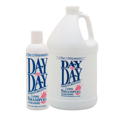 Day to Day Moisturizing Shampoo
